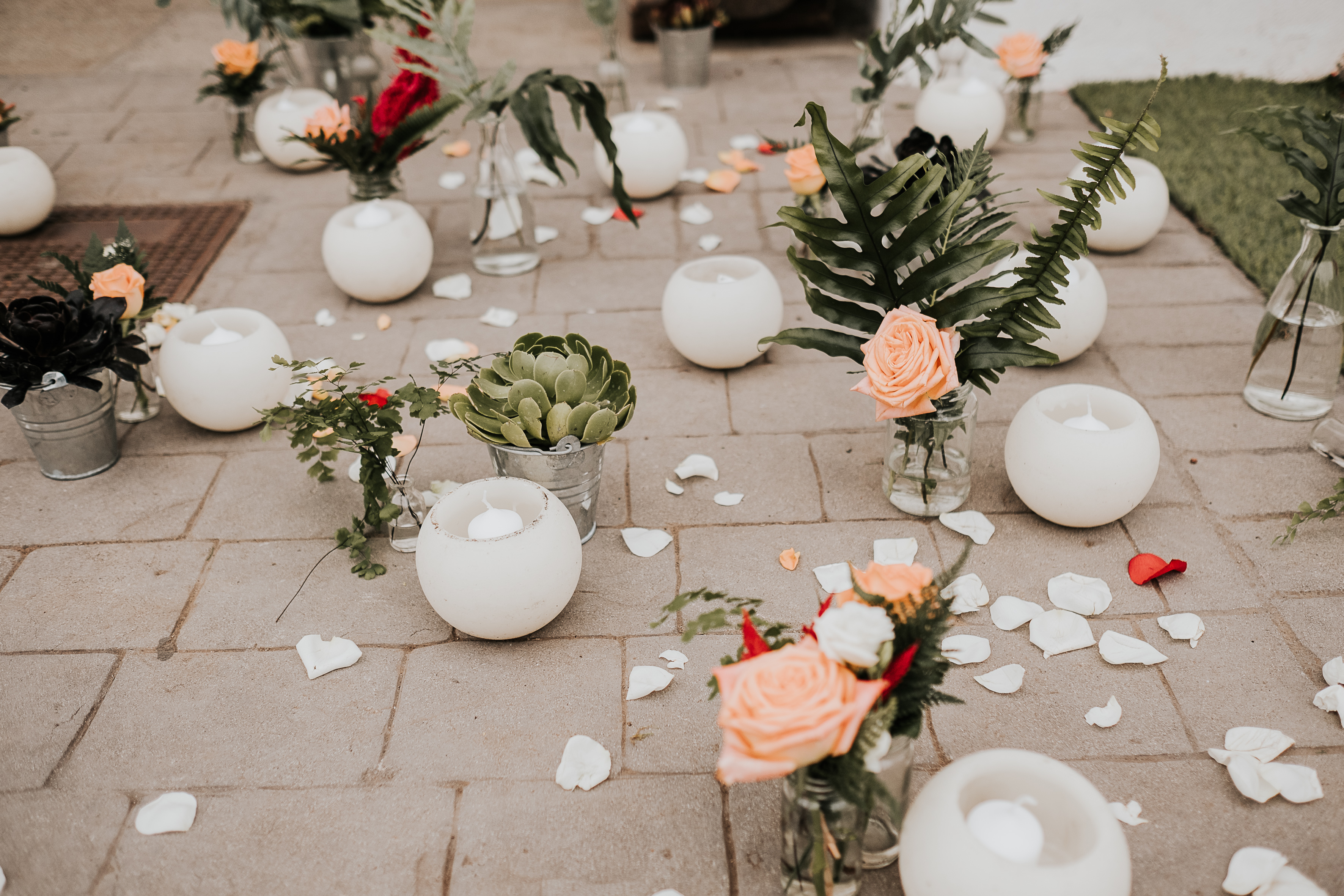 D-bodas